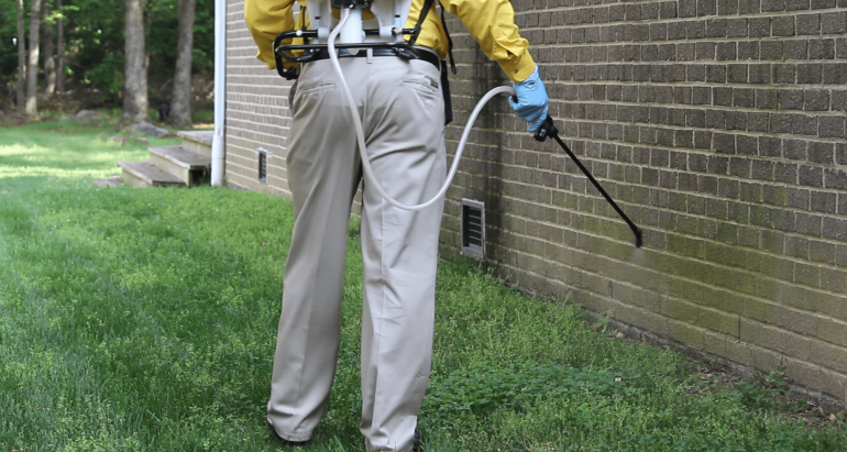 Guaranteed Pest Coverage